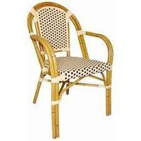 Kunststof Rotan stoel met armleuning/2 kleuren (4)